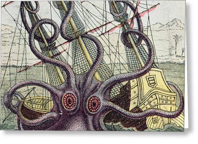 Giant Octopus Greeting Card by Denys Montfort