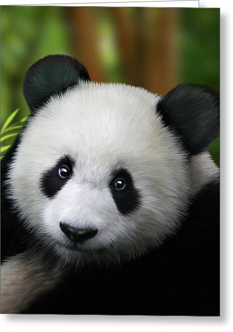 Giant Greeting Cards - Giant Panda Greeting Card by Julie L Hoddinott