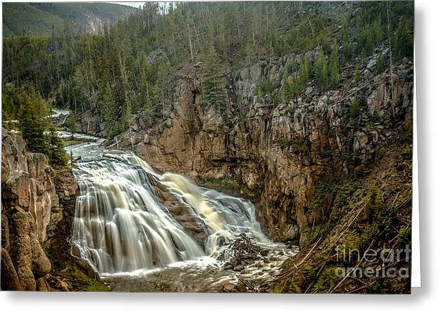 Gibbon Falls Greeting Card by Robert Bales