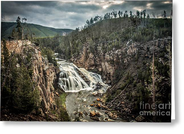 Gibbon Waterfall Greeting Card by Robert Bales