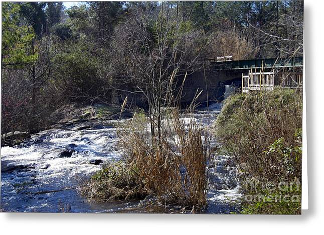 Beach Photography Greeting Cards - Gibson Pond Dam Greeting Card by Skip Willits