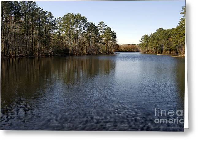Beach Photography Greeting Cards - Gibson Pond, Sc Greeting Card by Skip Willits
