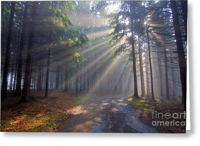 Uncanny Greeting Cards - Gift of Light - God beams Greeting Card by Michal Boubin