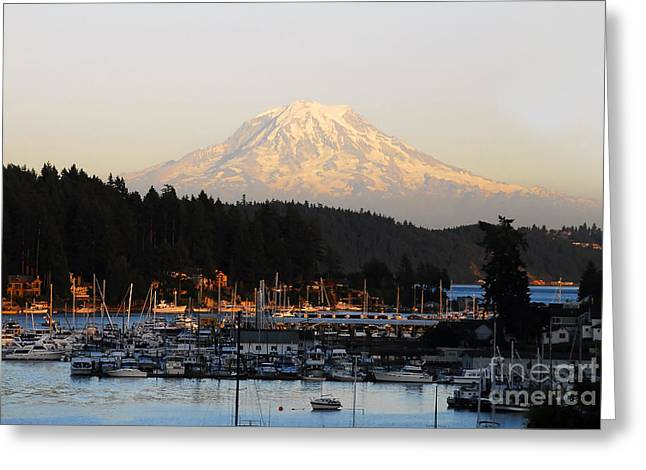 Snow Capped Greeting Cards - Gig Harbor Greeting Card by David Lee Thompson
