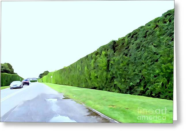 Abstract Digital Photographs Greeting Cards - Gin Lane Hedges Greeting Card by Ed Weidman