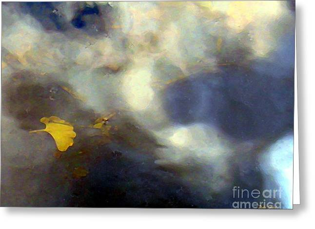 Trees Reflecting In Water Greeting Cards - Ginkgo Leaf in Puddle Greeting Card by Dale   Ford