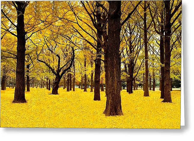 Ginkgo Trees In Autumn Greeting Card by Movie Poster Prints