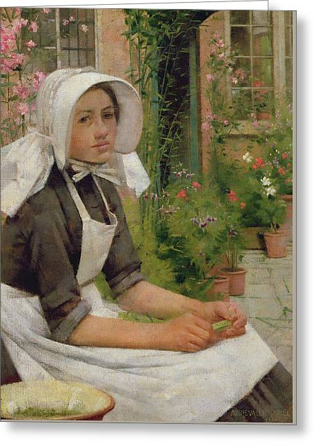Girl Shelling Peas Greeting Card by Albert Chevallier Tayler
