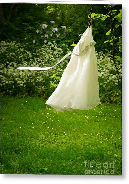 Belted Dress Greeting Cards - Girls Dress Greeting Card by Amanda And Christopher Elwell