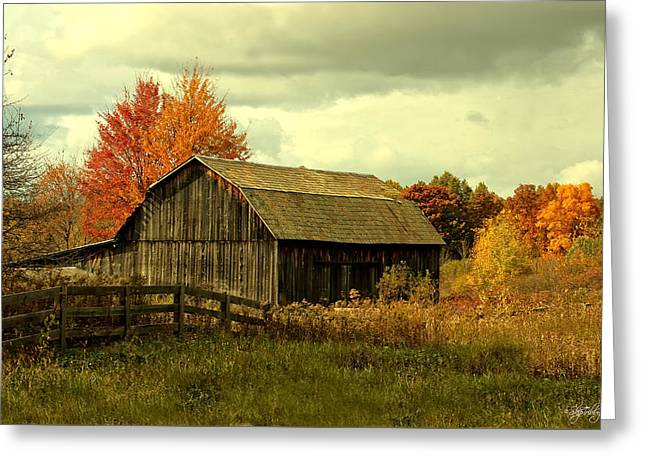 Skip Tribby Greeting Cards - Fall Has Always Been My Favorite Season. Greeting Card by Skip Tribby