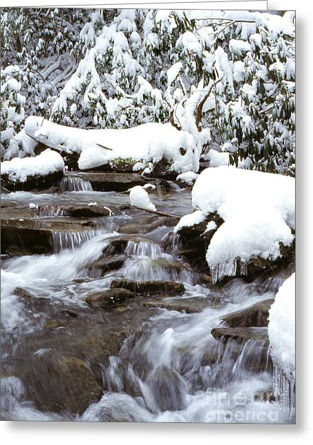 Given Greeting Cards - Givens Run Cascade in January Greeting Card by Thomas R Fletcher