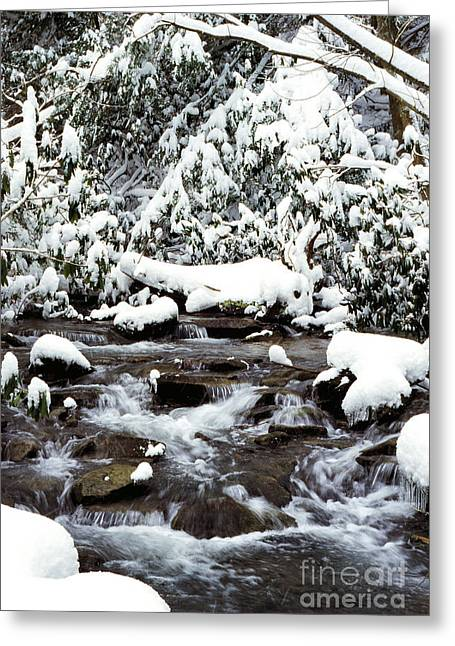Given Greeting Cards - Givens Run Cascade in Winter Greeting Card by Thomas R Fletcher
