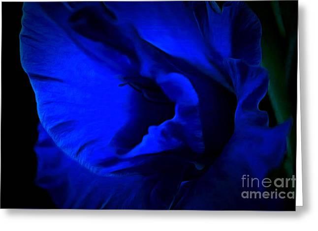 Gladiolus Of Blue Greeting Card by Krissy Katsimbras