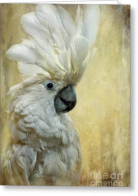 White Birds Greeting Cards - Glamour Girl Greeting Card by Lois Bryan