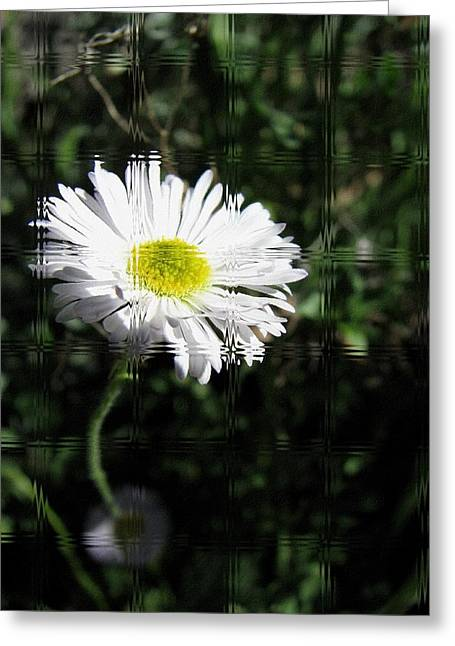 Landscape Framed Prints Greeting Cards - Glass Paneled Daisy Greeting Card by Lisa S Baker