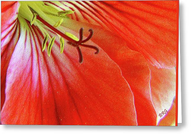 Glorious Geranium Greeting Card by Ben and Raisa Gertsberg