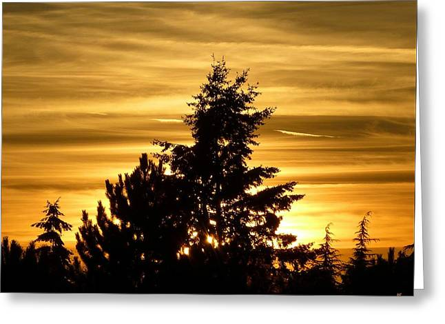 Glorious Guildford Sunset Greeting Card by Will Borden