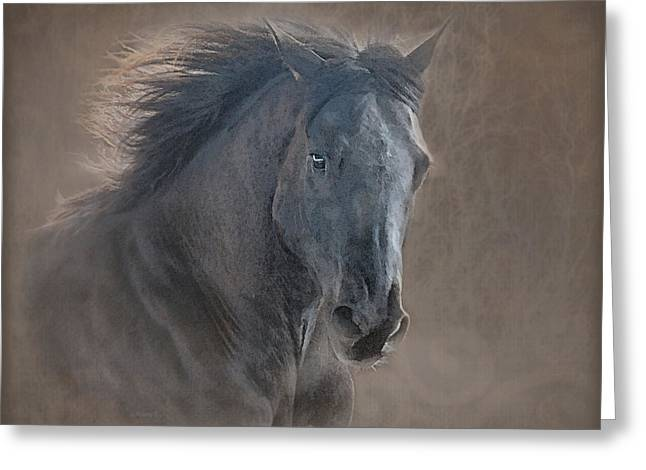 Glory Galloping Black Horse Greeting Card by Renee Forth-Fukumoto