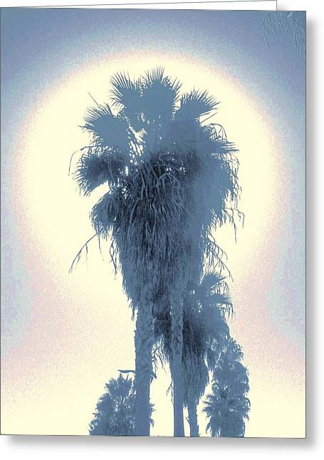 Palm Tree Greeting Cards Greeting Cards - Glow Greeting Card by Daniele Smith