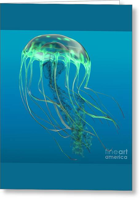 Glow Green Jellyfish Greeting Card by Corey Ford