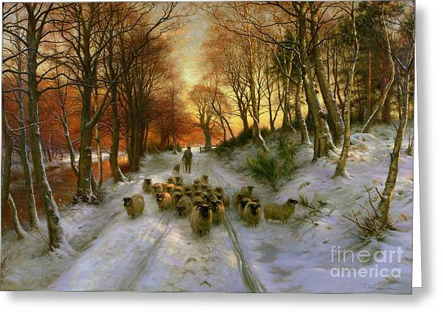 Sheep Greeting Cards - Glowed with Tints of Evening Hours Greeting Card by Joseph Farquharson