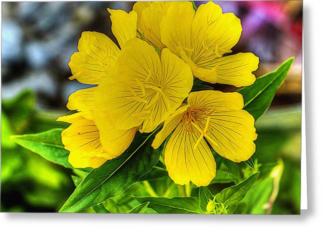 Flower Design Greeting Cards - Glowing Golden Buttercup Greeting Card by William Sturgell