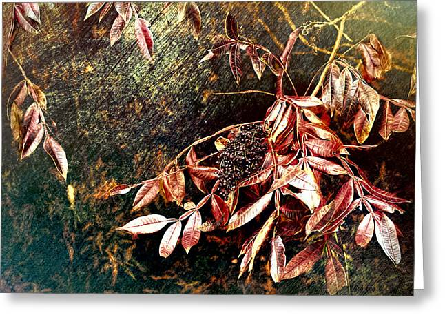 Glowing Sumac With Berries Greeting Card by Bellesouth Studio