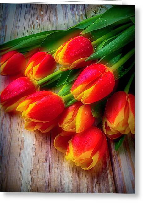 Glowing Tulips Greeting Card by Garry Gay