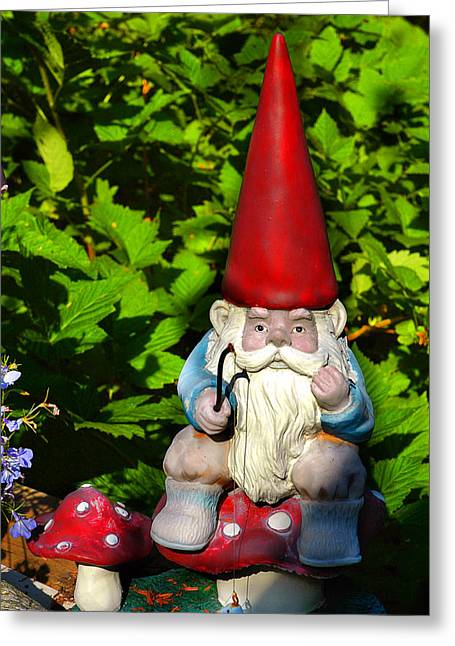 Gnomes Greeting Cards - Gnome Fishing Greeting Card by Harry Spitz