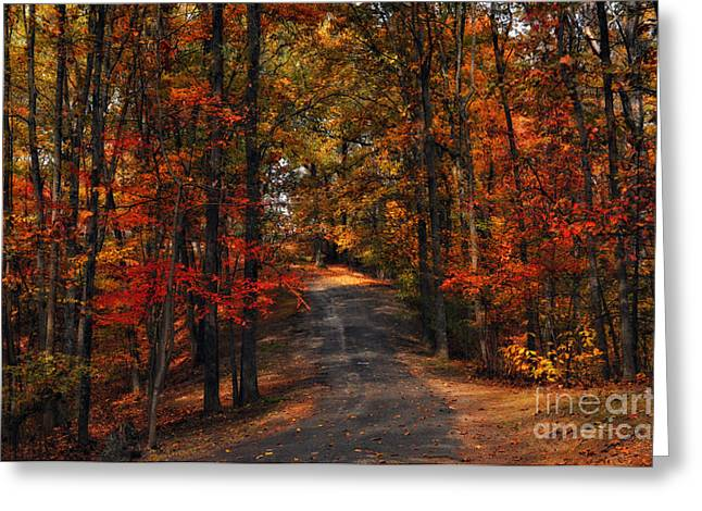 Autumn Photographs Greeting Cards - Gods Canvas Greeting Card by Kathy Jennings