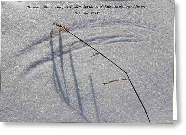 Gods Word Is Infinite Greeting Card by Cliff Ball