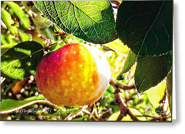 Going Apple Picking Greeting Card by MaryLee Parker