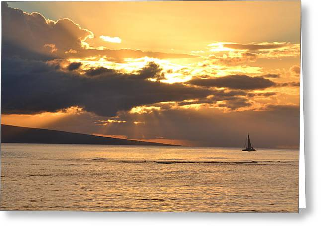 Lahaina Greeting Cards - Going Home Greeting Card by Petra Enochs
