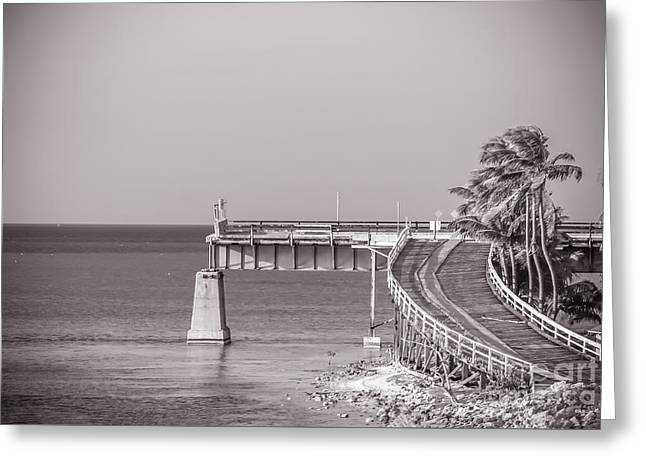 Going Nowhere - Monochrome Greeting Card by Claudia M Photography