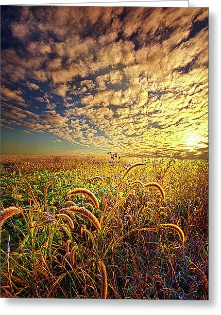Going To Sleep Greeting Card by Phil Koch