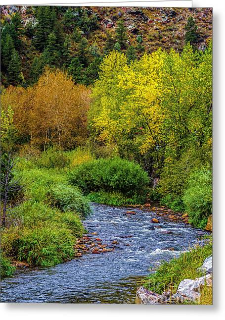 Fall Colors Greeting Cards - Going With the Flow Greeting Card by Jon Burch Photography