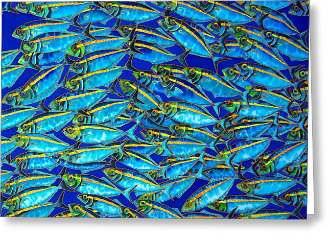 Pacific Tapestries - Textiles Greeting Cards - Gold Banded  Scad Greeting Card by Daniel Jean-Baptiste