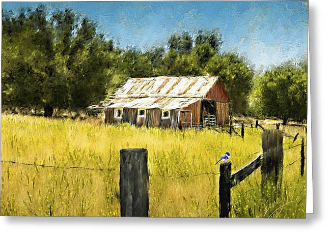 Recently Sold -  - Old Barns Greeting Cards - Gold Country Barn Greeting Card by Diana Ralph