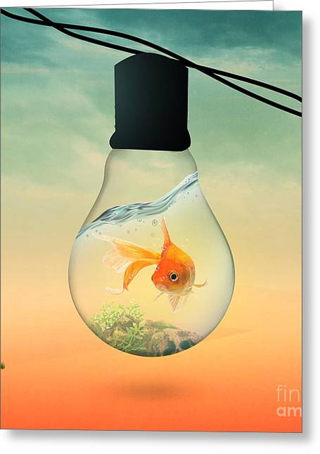 Funny Pop Culture Greeting Cards - Gold Fish 4 Greeting Card by Mark Ashkenazi