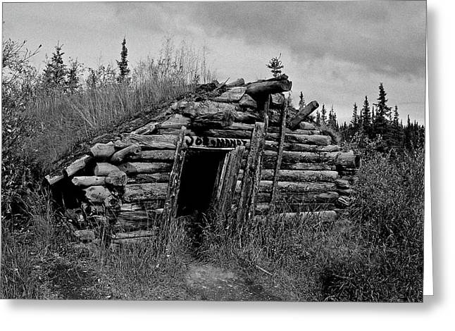 Klondike Gold Rush Greeting Cards - Gold Rush Cabin - Yukon Greeting Card by Juergen Weiss