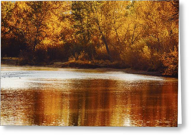 Reflections In River Greeting Cards - Golden autumn along Boise River Boise Idaho Greeting Card by Vishwanath Bhat