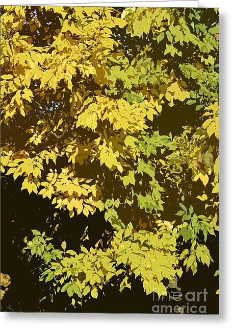 Autumn Art Greeting Cards - Golden branches Greeting Card by Carol Lynch