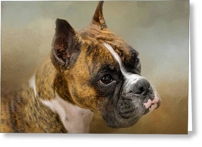 Boxer Greeting Cards - Golden Brindle Boxer Greeting Card by Jai Johnson
