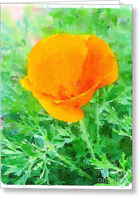 Abstract California Poppies Greeting Cards - Golden California Poppy Greeting Card by John Castell