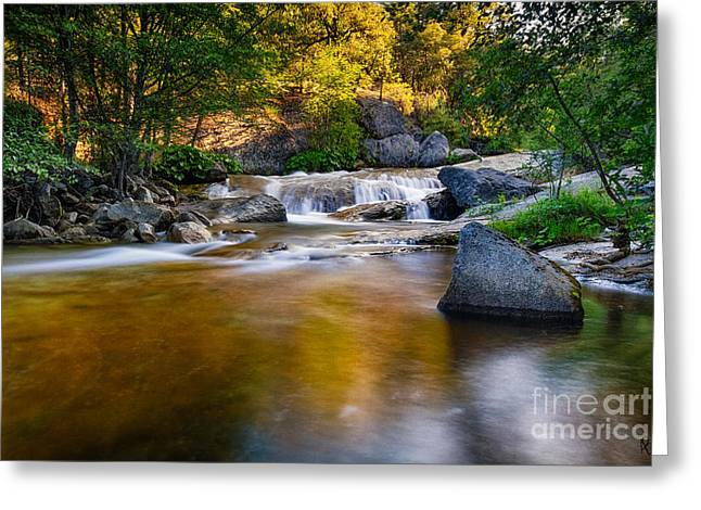 Sierra Gold Greeting Cards - Golden Calm Greeting Card by Anthony Bonafede