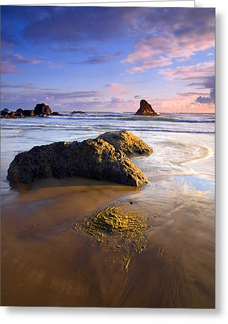 Seastack Greeting Cards - Golden Coast Greeting Card by Mike  Dawson