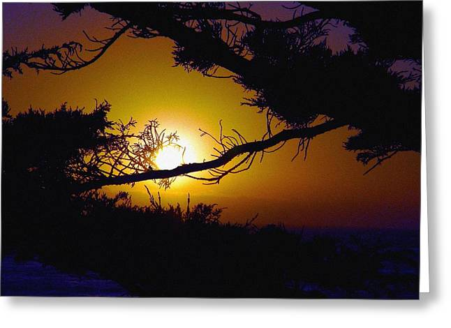 Best Sellers -  - Cambria Greeting Cards - Golden Coastal Sunset Greeting Card by Lorrie Morrison