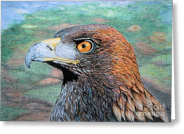 Golden Brown Drawings Greeting Cards - Golden Eagle Greeting Card by Yvonne Johnstone