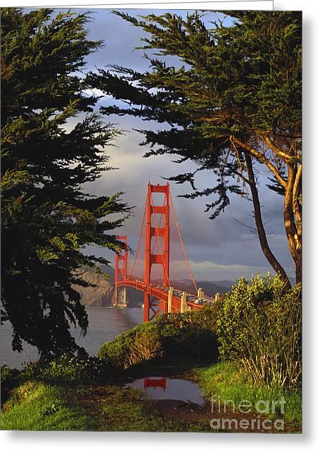 Californian Greeting Cards - Golden Gate Bridge Greeting Card by Brenda Tharp