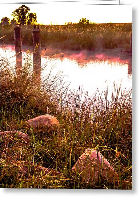 Photo Art Gallery Greeting Cards - Golden glow Greeting Card by George Fivaz
